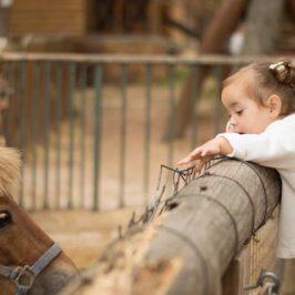 Vacaciones con niños: un lugar especial en plena naturaleza