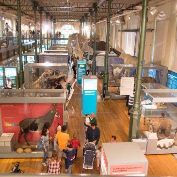 Visitamos el Museo de Ciencias Naturales