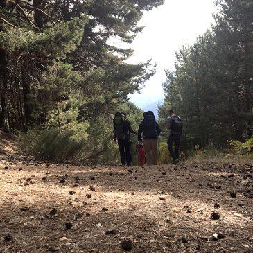Una excursión por la Sierra de Madrid perfecta para niños pequeños