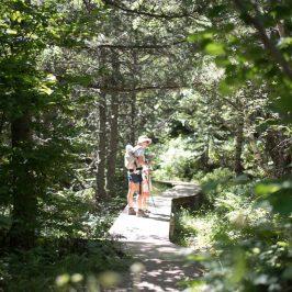Geocaching, una aventura de orientación para toda la familia