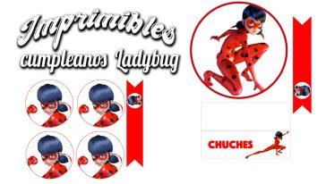 Cumpleaños de Ladybug + imprimible gratis